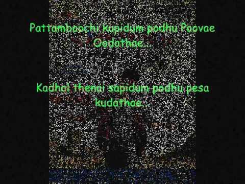Kavalan Pattampoochi Song Lyrics.wmv video