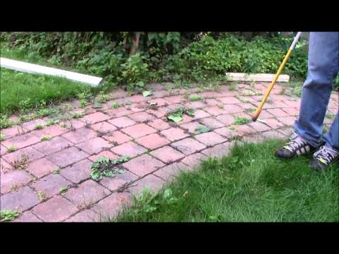 How to kill weeds with Propane Torch
