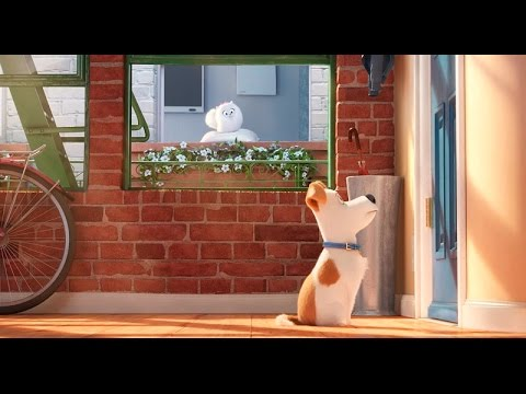 The Secret Life Of Pets | Official Trailer | Universal Pictures Canada