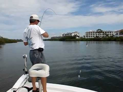 Englewood fishing videos for Fishing in englewood florida