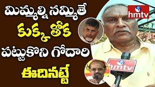 Thammareddy Bharadwaja Strong Counter To TDP Rajendra Prasad and Others  - hmtv - netivaarthalu.com