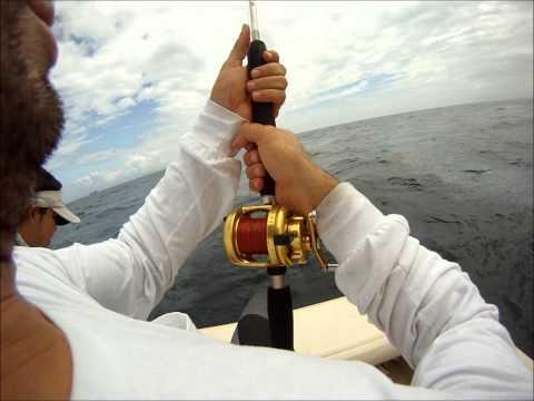 Sport Fishing Costa Rica, Pesca deportiva Costa Rica de Pez  Vela y Dorado, Mahi-Mahi, Dolphin