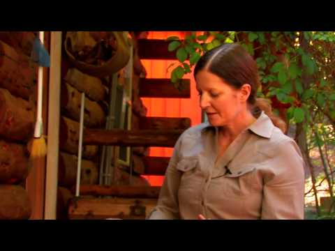 How to Plan a Raised Vegetable Garden