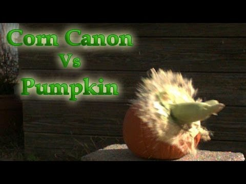 Corn Cannon Vs Pumpkin in Slow motion