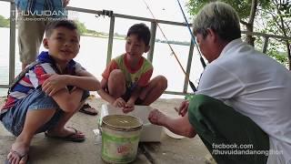 Săn cá Sông Đồng Nai cùng anh Tâm và đệ tử nhí