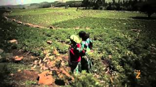 Care Ethiopia Nike Foundation - Mulualem's Story