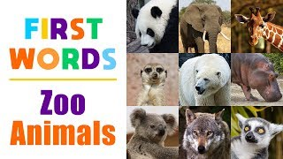 Learning Zoo Animals Names for Children - First Words for Toddlers, Babies, Kindergarten, Kids