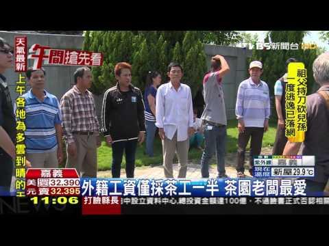 【TVBS】整台遊覽車皆非法外勞 拉拉山採茶遭攔截