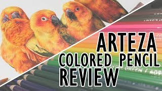 Arteza Expert Colored Pencils Review + Sun Conures!