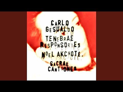 Sacrae Cantiones: No. 6, Sancti spiritus, Domine, corda nostra (Arranged for Guitar)