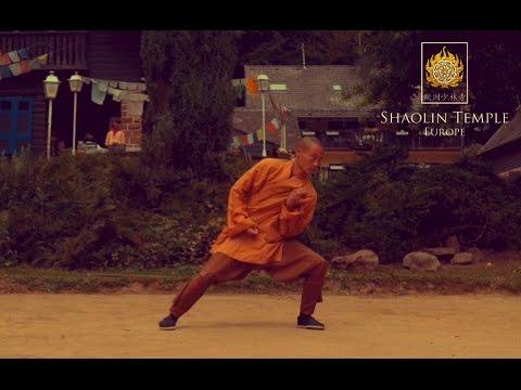 Shaolin 13 Luohan Rou Quan Routine · Shaolin Nei Gong Excercise