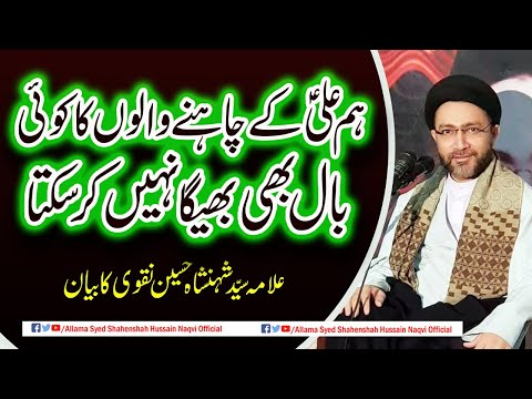 We cannot soak in any hair of Mola Ali a.s lovers by Allama Syed Shahenshah Hussain Naqvi