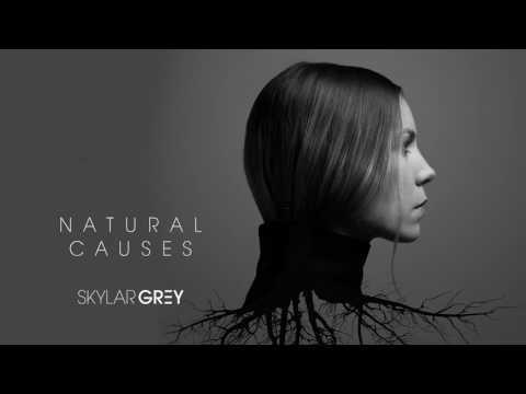 Skylar Grey - Kill For You Audio ft Eminem (LYRICS)