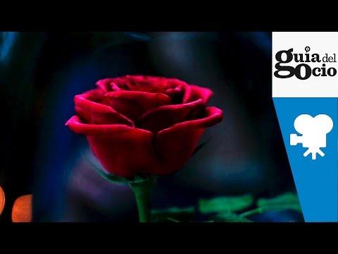 La bella y la bestia ( Beauty and the Beast ) - Teaser Trailer español