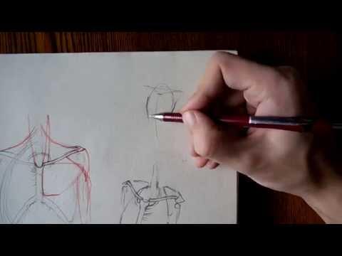 Видео как нарисовать шею