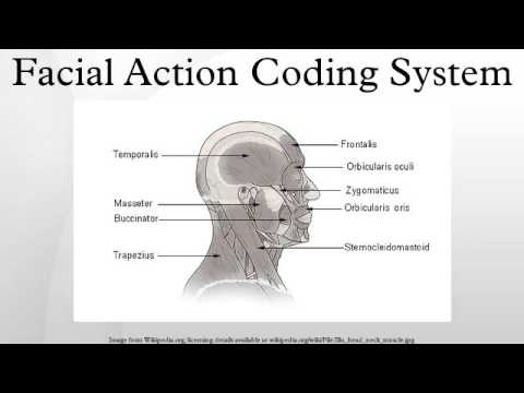 Facial action coding system: a technique for the measurement of facial movement
