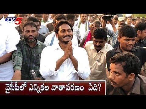 పార్టీలో సమస్యలపై ద్రుష్టి పెట్టని జగన్ | YCP Political Strategies for 2019? | TV5 News