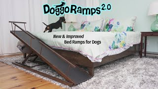 DoggoRamps 2.0 - The BEST Bed Ramp for Small Dogs!