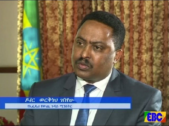 Interview With Foreign Minister Dr. Workneh Gebeyehu