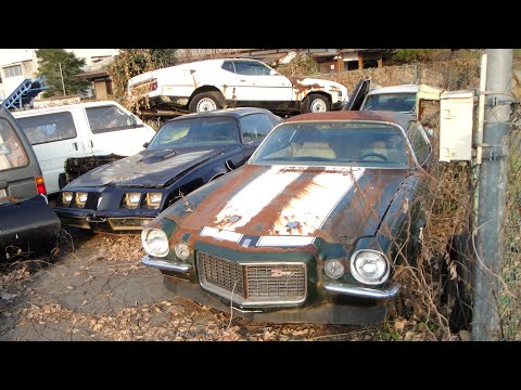 Eleven Abandoned Classic Cars In Japan Mustangs Camaros