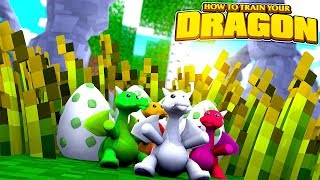 How To Train Your Dragon - WE FOUND BABY DRAGONS! w/TinyTurtle