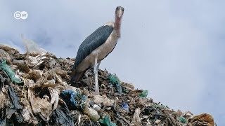 The Rich, the Poor and the Trash | DW Documentary