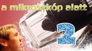 A Mikroszkóp Alatt 2