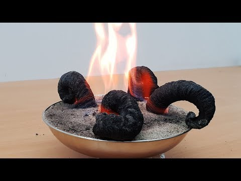 How to make fire black snake? Amazing Science Experiment