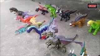 Đồ chơi khủng long bạo chúa bộ sưu tập - dinosaur collection toys for kids
