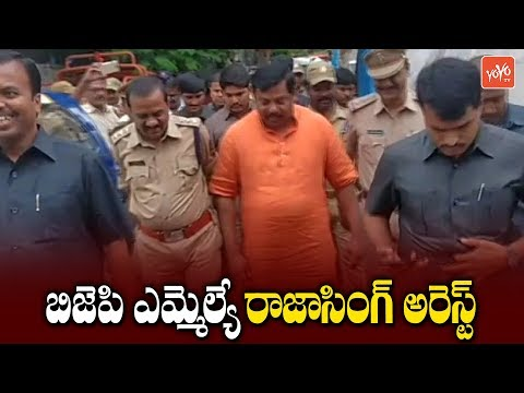 Goshamahal MLA Raja Singh Arrested by Hyderabad Police over his Protest | YOYO TV Channel