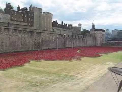 Tower of London Poppies Images Poppies at The Tower of London