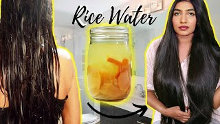 Rice Water For EXTREME HAIR GROWTH | How To Make Rice Water Hair Growth Rinse