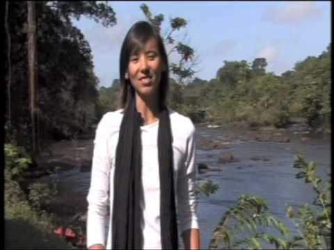 BBC Fast Track: Suriname and French Guiana