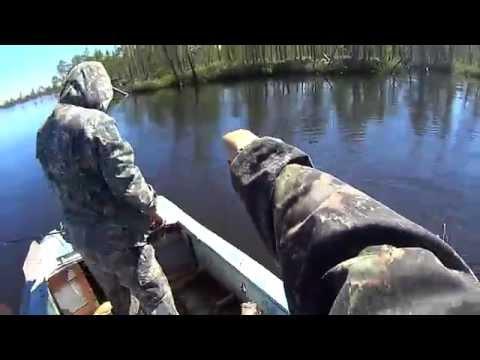 на рыбалку щуки реки манома