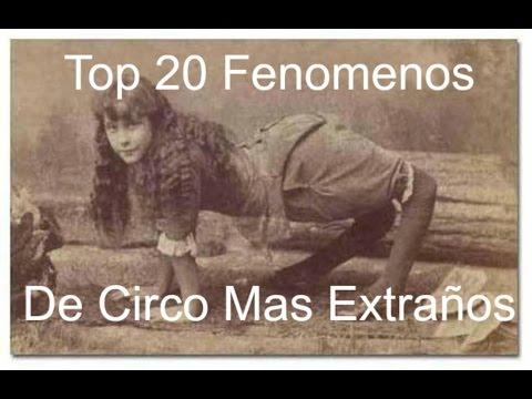 Top 20 Fenómenos De Circo Mas Extraños De La Historia Parte 2