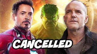 Why Marvel Cancelled Agents of SHIELD - Avengers Endgame Crossover Breakdown