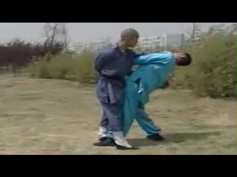 36 Qin Na and Techniques of Shaolin Kung fu Image 1
