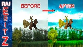 Photo Editing | Lightroom Photo Editing | Lightroom tutorial