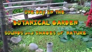 Relax One Day in Botanical Garden Best Original Sound and Video of nature HD