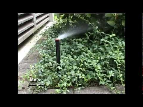 Beregnungsanlagen Für Rasen Und Beete