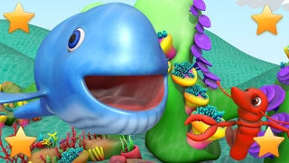 Big Blue Whale | Kindergarten Nursery Rhymes & Songs for Kids