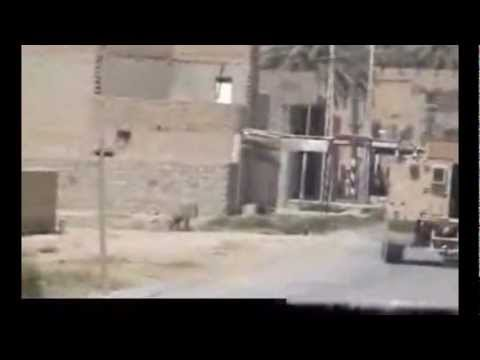 Animal Cruelty in Iraq as soldiers blow up a dog