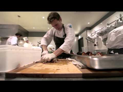 21st Century Ltd: Alinea and Eleven Madison Park
