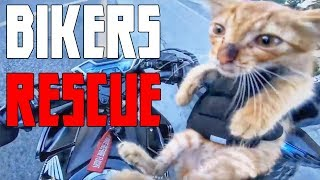 SUPER HERO BIKERS - BIKER SAVES KITTEN - ACTS OF KINDNESS