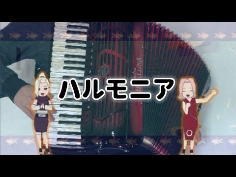 [Accordion]Naruto ED2 - Harmonia - Rythem