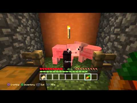 Top 10 things you probably didn't know about minecraft