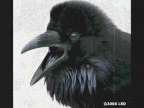 The Alan Parsons Project - The Raven