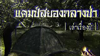 เล่าเรื่องผี EP.28 | แคมป์สยองกลางป่า
