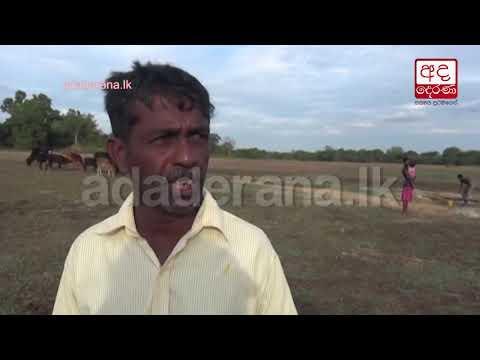 droughtaffected fami|eng