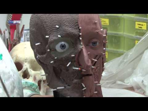 14e eeuws skelet Harry uit Zwolle heeft gezicht
